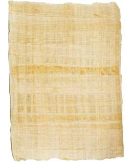 Echter Papyrus - Bild vergrößern