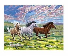 Galoppierende Pferde, 30 x 40 cm - Bild vergrößern