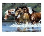 Pferde im Fluß, 30 x 40 cm