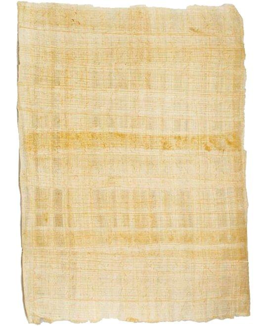 Echter Papyrus